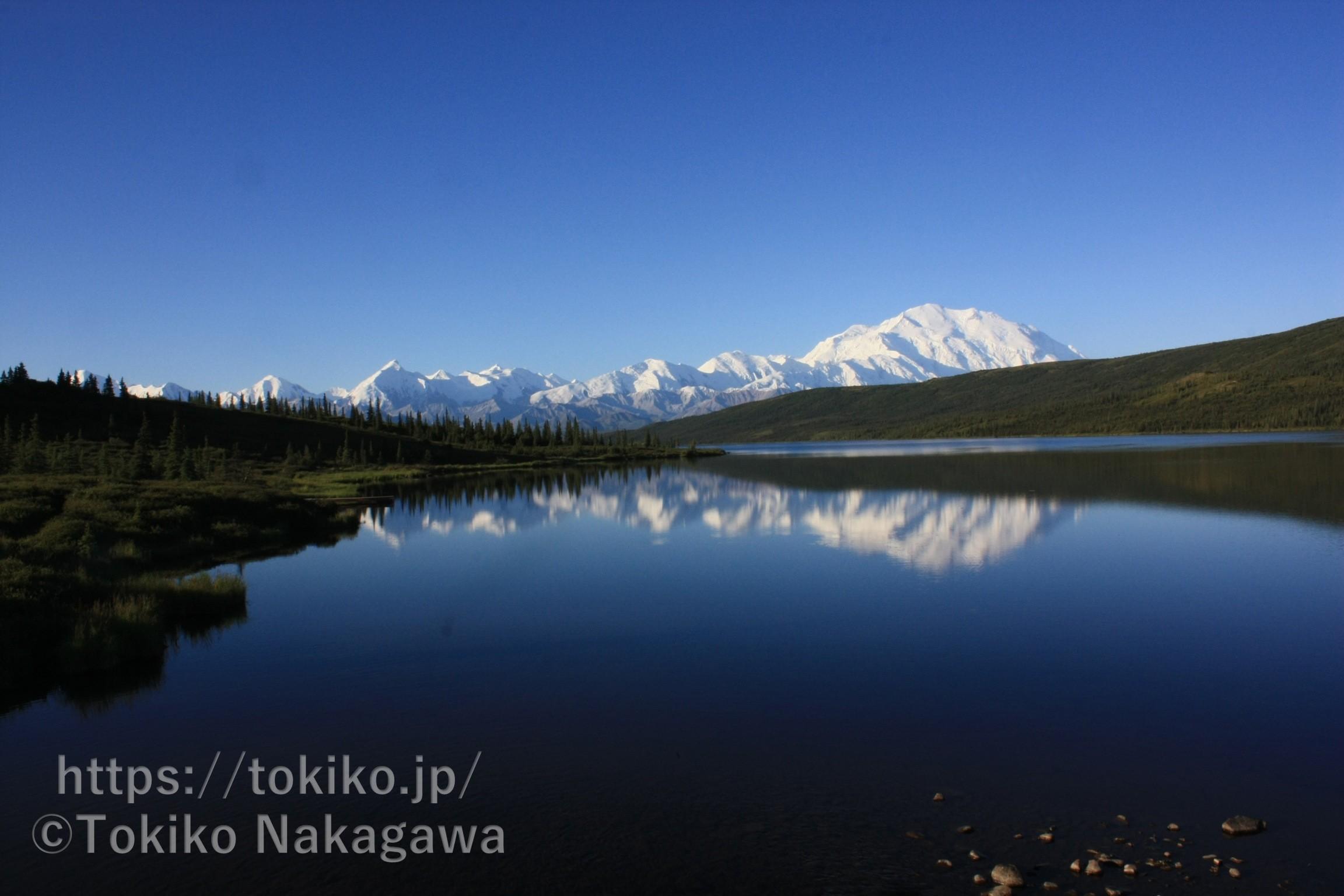 アラスカ デナリ国立公園 デナリ(マッキンリー)の眺め