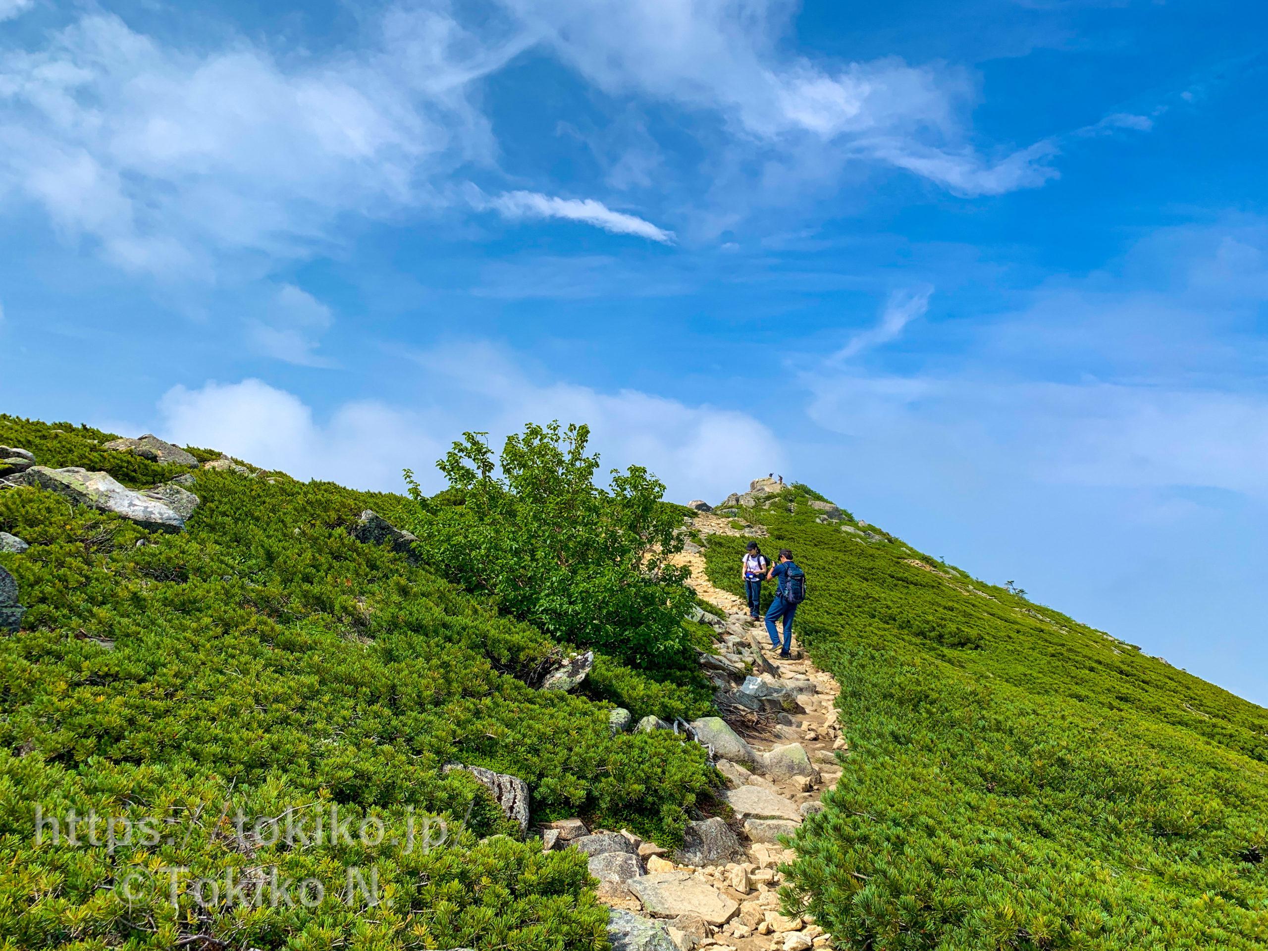 金峰山|大弛峠からピストン|マタニティ登山その④|妊娠7ヶ月