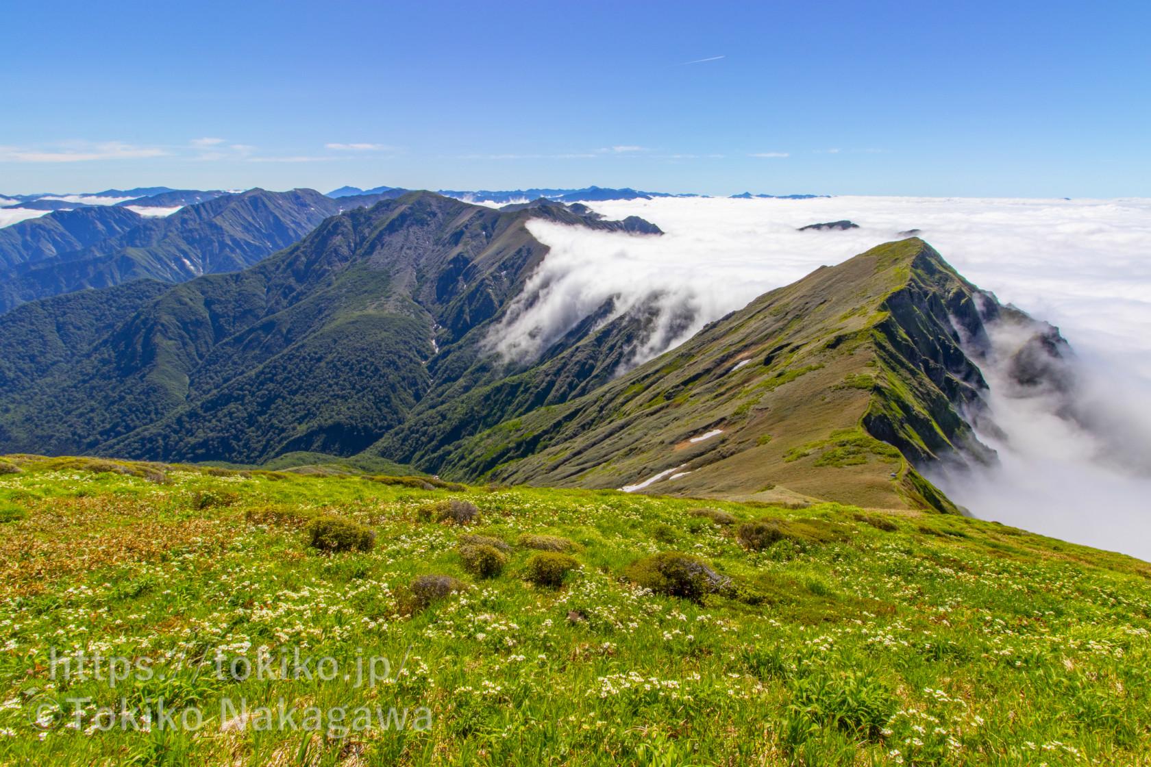 谷川主脈縦走|一面の雲海と滝雲|平標山~仙ノ倉山~万太郎山~谷川岳