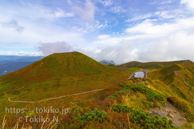 秋田駒ヶ岳|八合目登山口からピストン